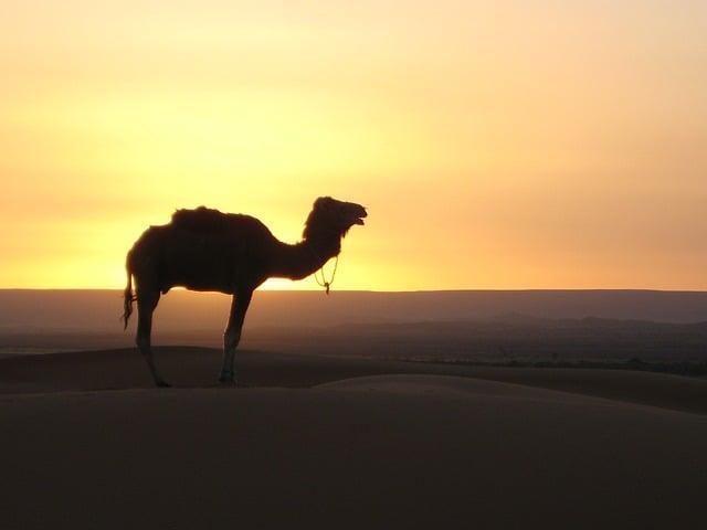 Marocco vacanze consigli utili