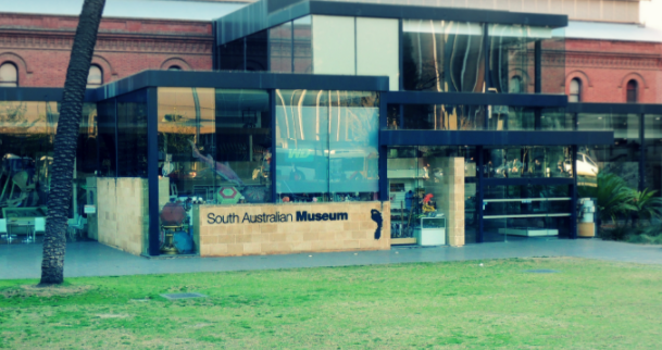 Galleria foto - Viaggio ad Adelaide Australia Foto 8