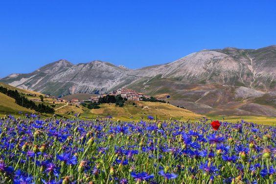 Galleria foto - Audioguide e videoguide gratis per visitare i Monti Sibillini Foto 6