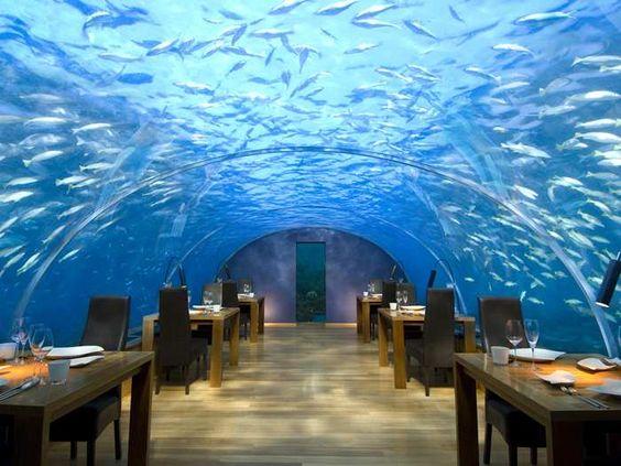 Maldive ristorante sottomarino