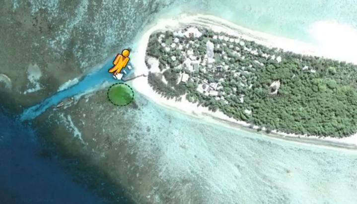 Esplorare gli oceani con Google Street View
