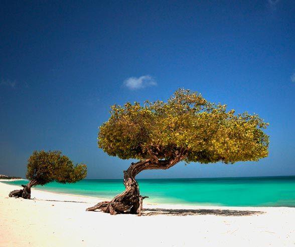 spaiggia-caraibiEagleBeach