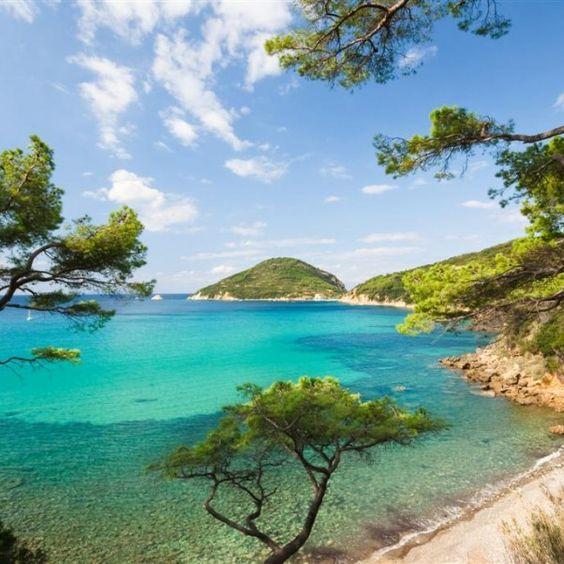 Galleria foto - Isola d'Elba vacanze Foto 8