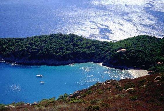 Galleria foto - Isola d'Elba vacanze Foto 10