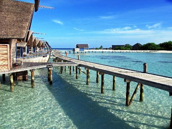 maldive-atollokaafu