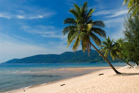 Malaysia, Pulau Tioman (Tioman Island), palm trees on sandy beach at the Berjaya Resort
