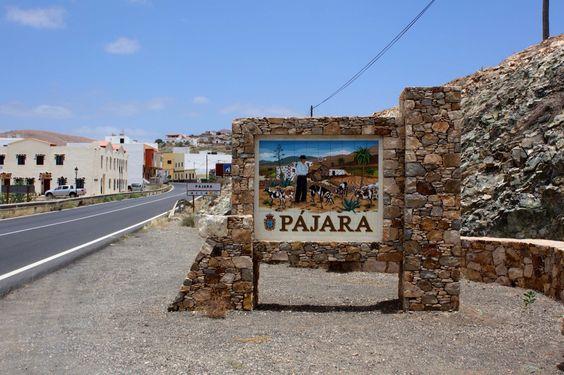 fuerteventura-pajara