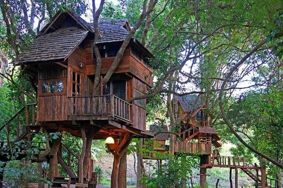 Villaggio sugli alberi piemonte - Costruire case sugli alberi ...
