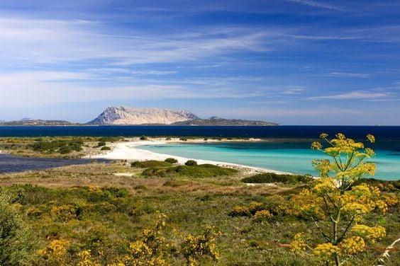 Galleria foto - Sardegna a settembre Foto 14