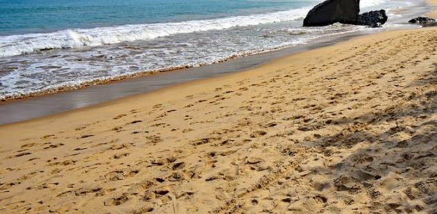 Galleria foto - Mattinata spiagge più belle Foto 2