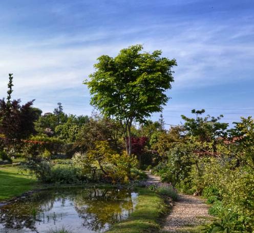 saluzzo-giardino-botanico