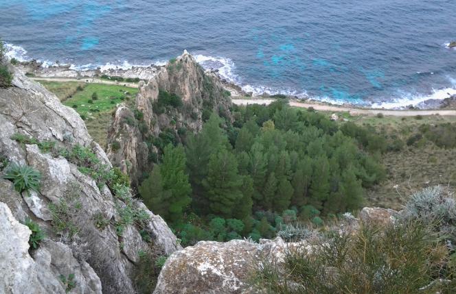 Galleria foto - Isola delle Femmine vacanze consigli Foto 7
