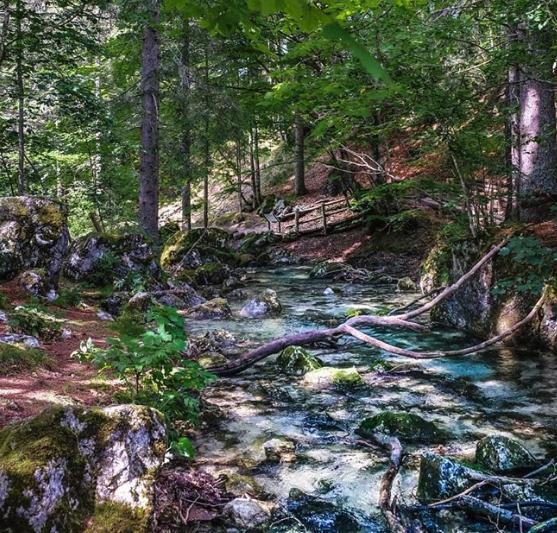 lago-di-tovel-torrente-tresenica