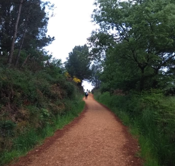 cammino-di-santiago-trekking
