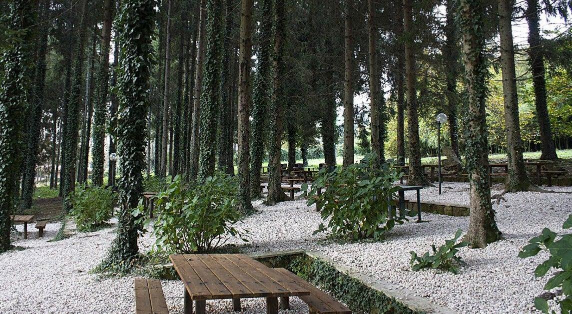 Rocca Priora dove mangiare bene spendendo poco