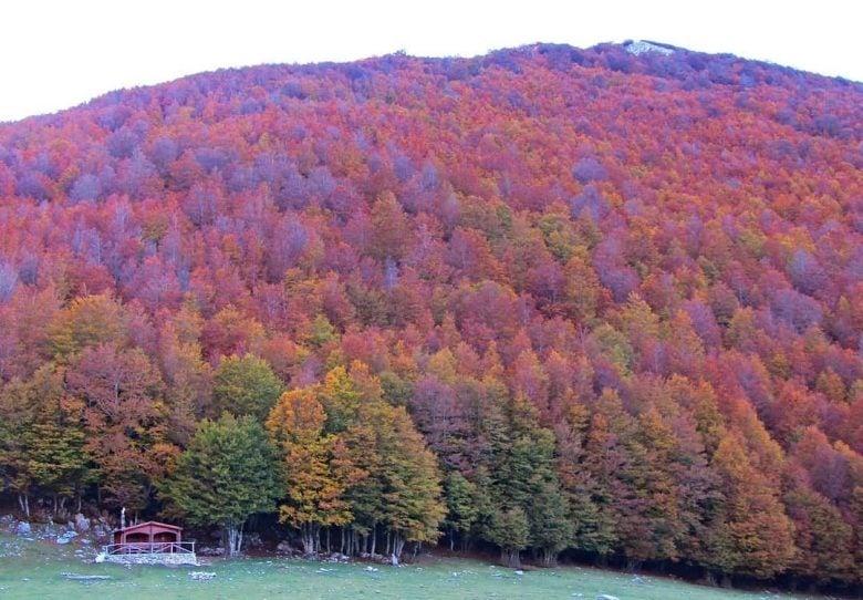 borghi-calabria-autunno