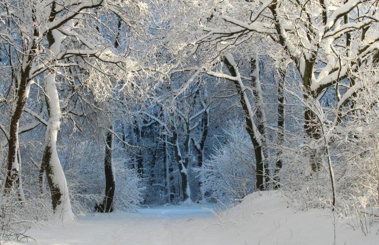 mete-natale-2021-paesaggio-neve